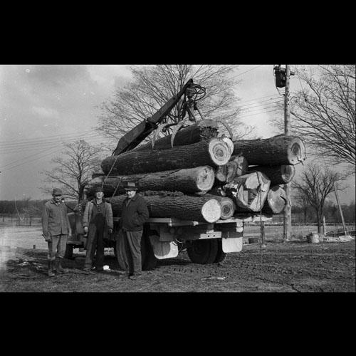 Men with logging truck