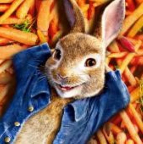photo of peter rabbit from the movie