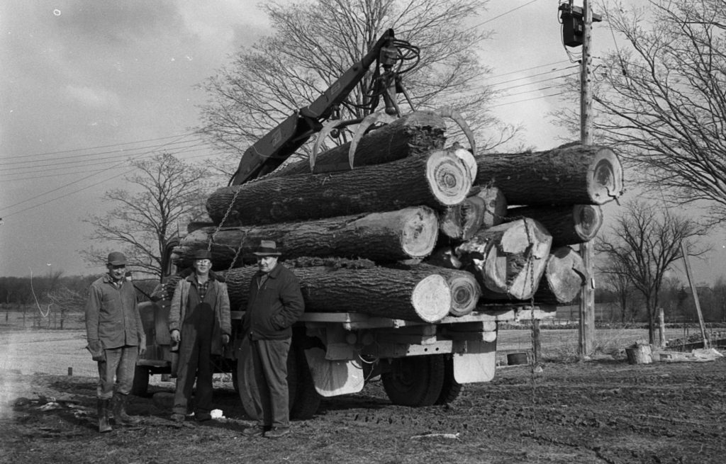 Image of krug brothers in front of truck filled with large tree logs